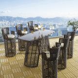 Qaulity superior al aire libre usar la barra de los muebles del jardín fijada con el vector de Chair& (YT645-2)