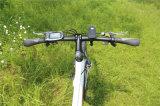 спрятанный 700cc велосипед Bike Ebike горы батареи электрический