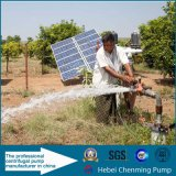CC 24V Small High Pressure Submersible Solar Water Pumps per Well