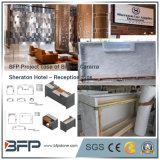 Las losas de mármol blanco de Carrara Bianco Natural del Sheraton Hotel Recepción Tops y Azulejos