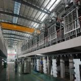 Fangyuan省エネEPSの連続的な泡立つ機械