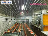 Construction préfabriquée dans la Chambre de volaille avec le matériel de qualité