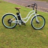 大きいモーター低いステップ浜の電気バイク