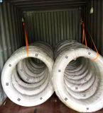 Fertiger Stahldraht 10b33 für die Schrauben-Herstellung