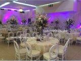결혼식과 사건 (YC-A239)를 위한 싱가포르에 있는 신식 금 채널 의자