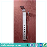 El más reciente Ducha de acero inoxidable Panel de ducha (SP-9004)