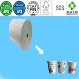 Papel recubierto PE de doble y de un solo lado para el vaso de copa y las tazas de papel.