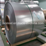 HauptHot Dipped Galvanized Steel in Coil