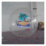 [كستومزيد] صورة زيتيّة ماء قابل للنفخ يمشي إنسانيّة كرة كرة