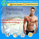 Lo steroide di alta qualità di Parabolan spolverizza il carbonato il CAS 23454-33-3 di Trenbolone Hexahydrobenzyl