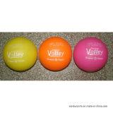 Gemengd Phthalate van de Sporten van de Kinderen van de Kleur Vrij Opblaasbaar Plastic Volleyball