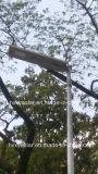 Система 6W-120W уличного освещения света СИД высокого качества франтовская солнечная СИД напольная солнечная