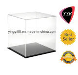 Горячее Selling Acrylic Display Box для Sport (YYB-018)