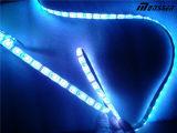 Striscia di magia LED di DC12V 5050SMD CI WS2812B