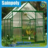Kleines Polycarbonat-Garten-Gewächshaus für Familie