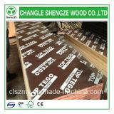 Película impermeável de 18mm enfrentada em madeira compensada