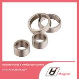 Anello su ordinazione magnete permanente neodimio/di NdFeB di alta qualità per i motori