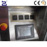 غير طبيعي الشكل الحرارة حزمة مزدوجة خط آلة التعبئة والتغليف (DXDS-N220T)