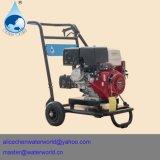 Producto de limpieza de discos del diesel del motor de la arandela del carbón del coche de la ISO del TUV del Ce