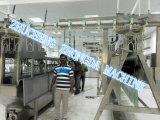 Il pollame di Halal di alta qualità macella la riga della macchina (ZD-1003)