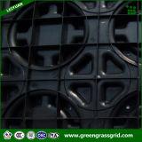 Fornitore del pavimento ecologico del modulo del riscaldamento di pavimento dei pp