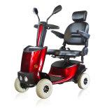Solax Buggie適用範囲が広い屋外旅行スクーター