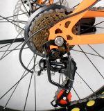 신식 뚱뚱한 타이어 전기 자전거 또는 자전거 의 바닷가 스포츠 Ebike 8fun Bafang 모터 뚱뚱한 타이어 전기 자전거