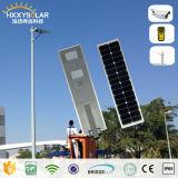 5 años de garantía 30W todo en una luz de calle al aire libre del movimiento solar LED para el jardín