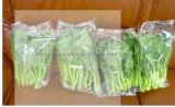 Цена машины для упаковки машины упаковки подушки капусты высокой эффективности автоматическое Vegetable
