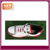 De nieuwe Schoenen van de Sport van de Veenmol van de Manier voor Verkoop