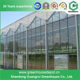 Hydroponic成長するシステムのための良質のガラス温室
