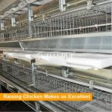 Система клетки цыпленка батареи бройлера сразу конструкции фабрики автоматическая