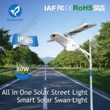 15W-80W 태양 제품 LED 점화 운동 측정기 검출기 가로등 옥외 정원 재충전용 빛