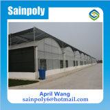 Heißes Verkaufs-Polycarbonat-Gewächshaus für wachsendes System