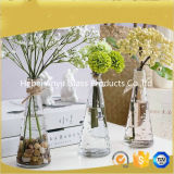 Vente chaude Vase en verre transparent / Décoration intérieure Vase en verre fleur avec fleur