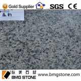Tuiles et brames bleues chinoises de granit de léopard des bons prix