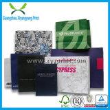 Prezzo di fabbrica famoso del sacco di carta di marca di abitudine di immaginazione e di alta qualità