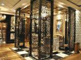 Покрасьте экран нержавеющей стали металла домашний декоративный