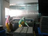 Surgélation de tunnel de crême glacée de fruits de mer de pain de qualité