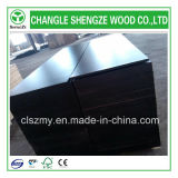 madera contrachapada Shuttering impermeable de la base del empalme del dedo de 16m m