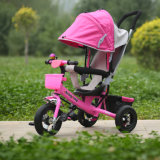 Kind Tricycle/Kids Tricycle/Baby Tricycle mit Fashion Design (OKM-667)