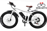 500W 8 Fun Motor Fat Tire Mountain Electric Bicycle
