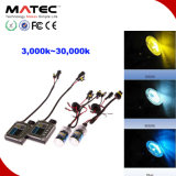 Vente en gros Meilleur prix inférieur de qualité 35W / 55W / 75W / 100W, kit HID Lampe