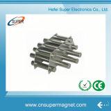 Heißester starker Stabmagnet des Verkaufs-(25*300mm)
