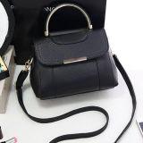 Neueste fantastische Dame-Beutel-Form-heiße Entwurfs-Handtaschen-Schulter-Beutel für Frauen Sy8060