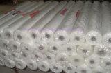 Vetro-fibra Mesh di 5*5 160G/M2 per Wall