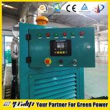 20-500kw abrem o tipo gerador de CNG/Gas
