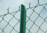 Kettenlink-Zaun (PVC u. galvanisiert)