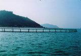 円の浮遊水産養殖の栽培漁業のケージ