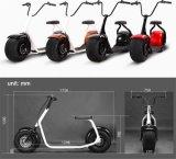 Motocicleta eléctrica Citycoco de la velocidad de la rueda de Seve dos con LED 800W